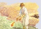 Глубокий смысл сказки о рыбаке и золотой рыбке