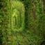 Этот красивый туннель поезда деревьев называется Туннель Любви находится на железнодорожной станции Клевань , Украина. Поезд на этой трассе проходит каждый день. Длина дороги 3 км.