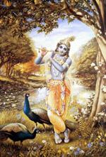 Кришна – восьмой  Аватар Вишну