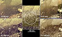 «Диск», изменяющий свою форму, «черный лоскут» и «Скорпион».