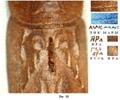 Рис. 10. Чтение надписей на лике Мары