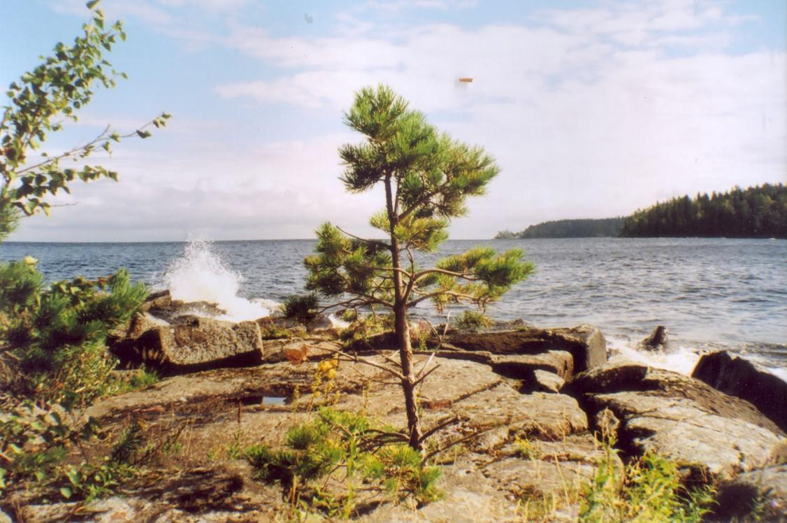 На берегу Святого острова. Фото 2010