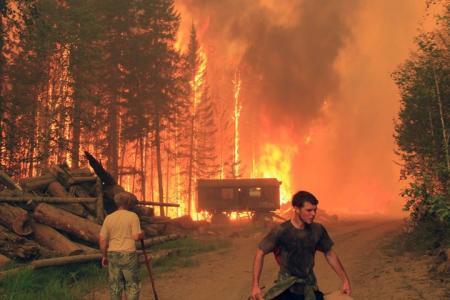 Добровольцы спасают Байкал от огня: «Масштабы бедствия колоссальны, горит все!»